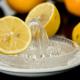 Les Fins Gourmets_Actualités_Mayonnaise_citron_Viande blanche